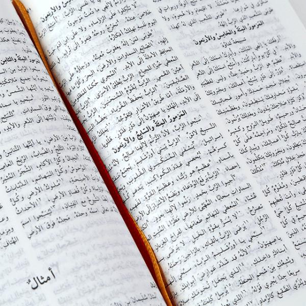 الكتاب المقدس باللغة العربية  NVD13 - غلاف صلب