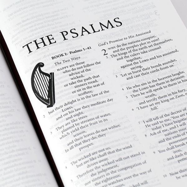 الكتاب المقدس باللغة الانجليزية الترجمة الكاثوليكية NRSV