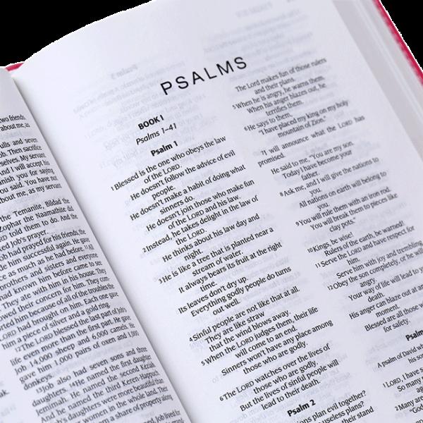 الكتاب المقدس باللغة الانجليزية لحقيبة الظهر NIrV - لون اخضر ووردي