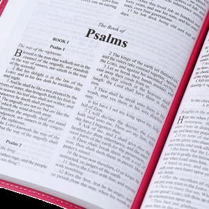 الكتاب المقدس باللغة الانجليزية للاطفال KJV - لون وردي