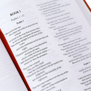 الكتاب المقدس باللغة الانجليزية للاطفال NIV - لون بني