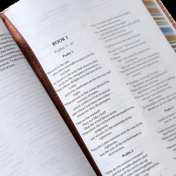 الكتاب المقدس باللغة الانجليزية لحقيبة الظهر NIV - لون بني فاتح