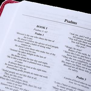 NIrV الكتاب المقدس باللغة الانجليزية