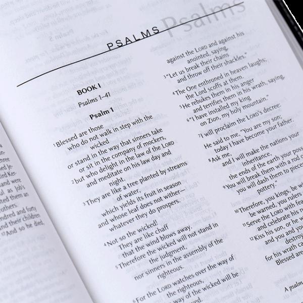 الكتاب المقدس الاختباري باللغة الانجليزية TNIV - غلاف لين