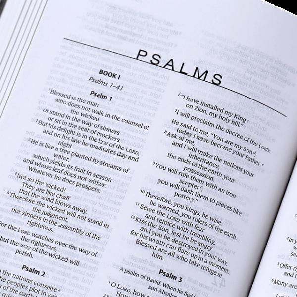 الكتاب المقدس باللغة الانجليزية خاص بالاباء المنشغلين NIV