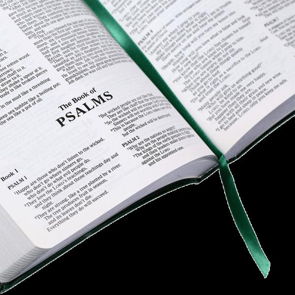 الكتاب المقدس باللغة الانجليزية NCV - لون اخضر