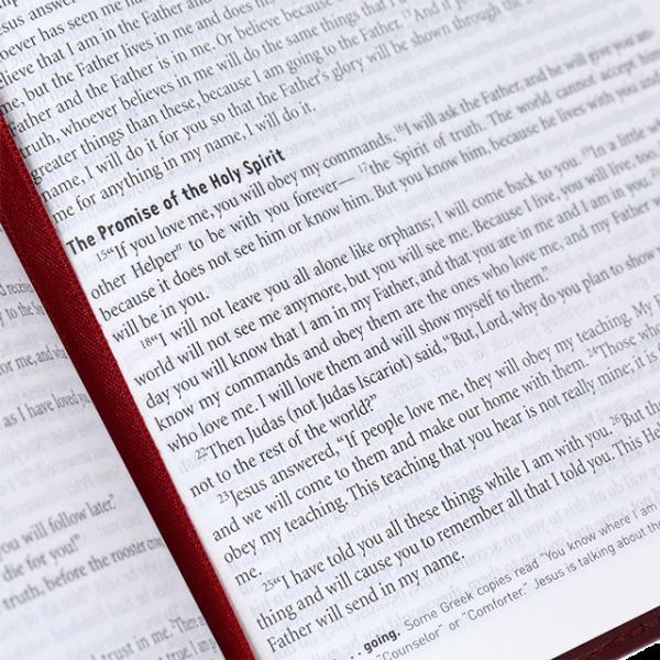 العهد الجديد  مع المزامير والامثال باللغة الانجليزية NCV
