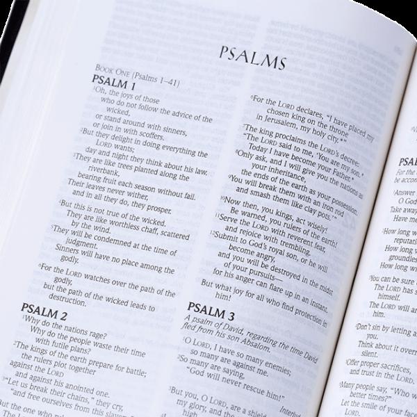 الكتاب المقدس المضغوط باللغة الانجليزية NLT - لون اسود