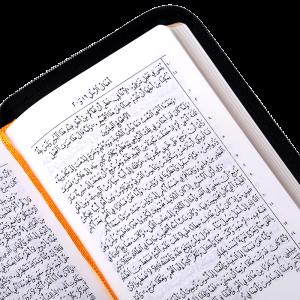 327Z العهد الجديد والمزامير