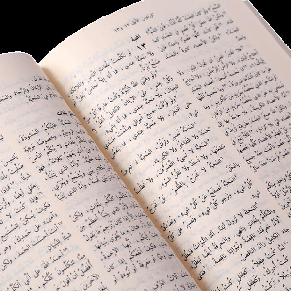 NVD262 الانجيل المقدس