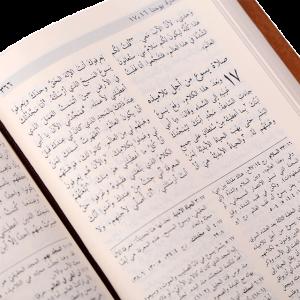 العهد الجديد قراءة رعائية