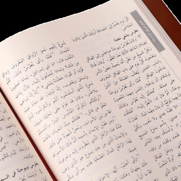 R293J العهد الجديد يسوعي