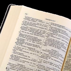 الكتاب المقدس باللغة الرومانية 052PL